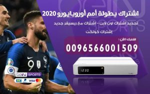اشتراك يورو 2020